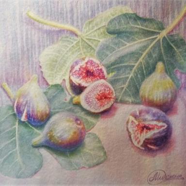 Натюрморт «Инжир на листьях» бумага, акварель 30х35,5