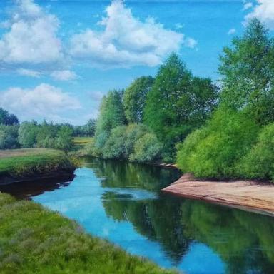 Река Цна близ д. Боровцы