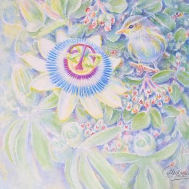 «Страстоцвет» 25 × 31 см