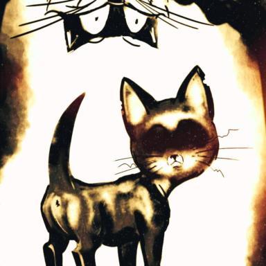 Kitten Gav and trouble